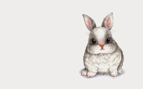 Picture animals, figure, rabbit, baby, art, pencil, Bunny, children's