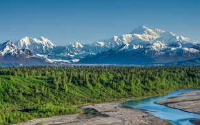Picture forest, river, mount McKinley, Denali national Park, Alaska Range, Denali National Park, Mount McKinley, Alaska …