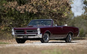 Picture 1965, Convertible, Pontiac GTO, Old car