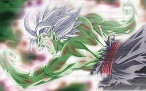 Picture game, alien, anime, martial artist, manga, Dragon Ball, strong, Dragon Ball Super, japonese, 018