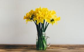 Wallpaper daffodils, bouquet, yellow, flowers