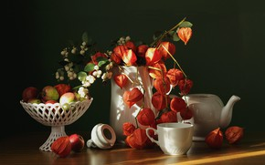 Picture autumn, apples, kettle, Cup, vase, pitcher, physalis, September, flora, the snowberry