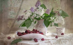 Picture cherry, lilac, composition