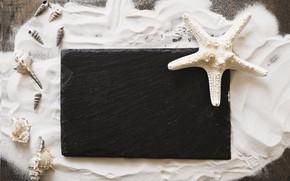 Picture sand, star, shell, summer, wood, sand, marine, starfish, composition, seashells
