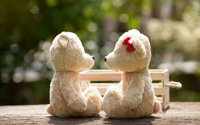 Picture love, toy, bear, pair, love, bear, park, kiss, romantic, teddy, cute