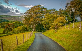 Wallpaper field, the sky, Wales, road, trees, UK, hills, the fence, grass, autumn, clouds