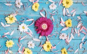 Picture flowers, background, yellow, petals, colorful, pink, gerbera, chrysanthemum, yellow, wood, pink, flowers, spring, gerbera