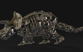 Picture metal, design, details, Triceratops, Triceratops