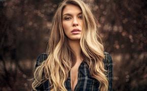 Picture glare, model, portrait, makeup, hairstyle, blonde, shirt, bokeh, Paulina, Martin Kühn, Martin Kuhn