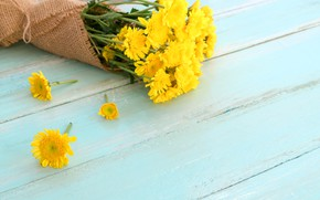Picture flowers, bouquet, spring, yellow, chrysanthemum, yellow, wood, flowers, spring, tender