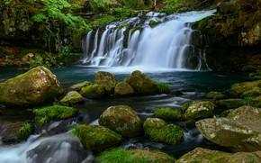 Picture greens, summer, grass, water, stones, shore, vegetation, waterfall, stream, cascade, pond, boulders, stones