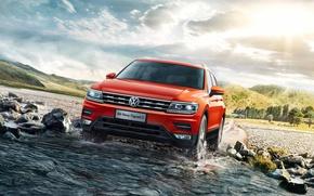 Picture Volkswagen, Volkswagen, crossover, Tiguan, Tiguan