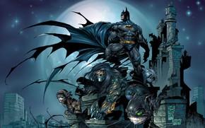 Picture city, fantasy, Batman, comics, artwork, mask, superhero, costume, fantasy art, DC Comics, cloak, Bruce Wayne, ...