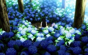 Picture trees, back, garden, blue, hydrangea, Sankarea, Sankarea, Sanka Rea, Sankyo Ray, black kitten