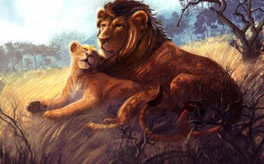 Picture Lions, Figure, Two, Animals