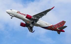 Picture the plane, flies, a passenger plane