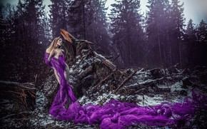 Wallpaper pose, figure, the situation, driftwood, ULTRAVIOLET, girl, shawl, forest