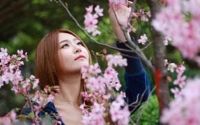Picture girl, spring, Sakura, Asian, bokeh