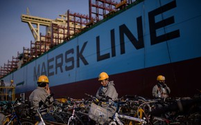 Picture Board, Line, Maersk, Maersk Line, In the port, Working
