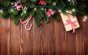 Picture decoration, berries, tree, New Year, Christmas, garland, Christmas, wood, Merry Christmas, Xmas, decoration