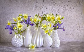 Picture flowers, spring, snowdrops, irises, daffodils, vases, Jacky Parker