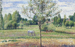 Wallpaper nature, landscape, Camille Pissarro, Horse on the Meadow. Cloudy. Eragny, picture