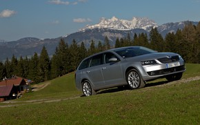 Picture the sky, grass, clouds, trees, mountains, lawn, home, 4x4, Skoda, universal, 2013, Skoda, Octavia Combi, …