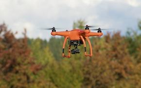 Picture vegetation, technology, drone, Autel X-Star Premium