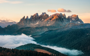 Picture the sky, clouds, light, mountains, fog, Alps, forest
