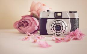 Wallpaper Viking, camera, flowers