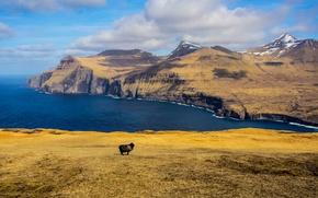 Wallpaper clouds, black sheep, shadows, Islands, mountains, sea