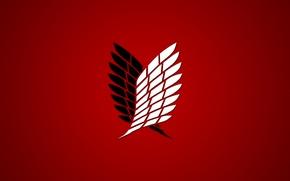 Picture red, game, anime, wings, asian, manga, japanese, oriental, asiatic, Attack on Titan, Shingeki no Kyojin, …