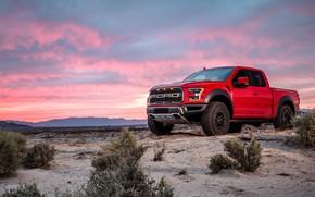 Wallpaper sunset, Ford, Raptor, pickup, F-150, 2019