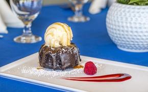 Picture raspberry, ice cream, cake, dessert