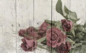 Picture background, roses, bouquet, texture, vintage, wood