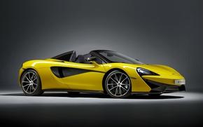 Picture background, McLaren, convertible, McLaren, Spider, 570S