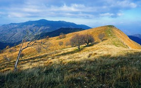 Picture Mountains, Autumn, Slope