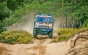 Picture Trees, Sport, Speed, Truck, Race, Master, Dirt, Russia, KAMAZ, KAMAZ, Best, Master, Redbull