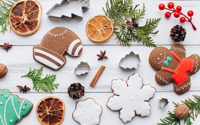 Picture berries, COOKIES, CITRUS, NEW YEAR, HOLIDAY, FIR-TREE BRANCHES, TREATS