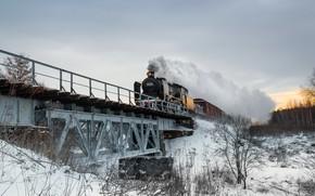 Picture winter, bridge, train, the engine