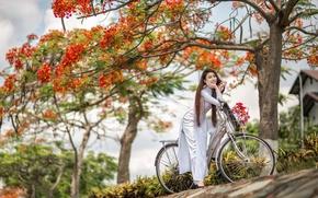 Picture summer, girl, bike