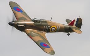 Picture British, Hurricane, single, fighter