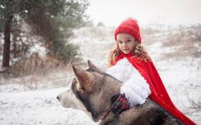 Wallpaper tale, forest, collar, Little Red Riding Hood, fur, dog, husky, Grey Wolf, winter, cloak, snow, ...