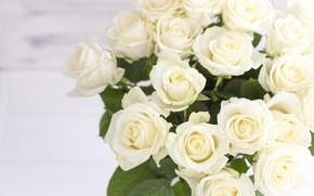 Picture bouquet, buds, White roses