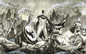 Picture Batman, armor, weapon, bat, Robin, hero, catwoman, hood, cape, Gotham, Dick Grayson