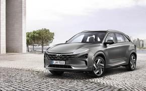 Picture Hyundai, 2018, crossover, Nexo