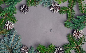 Picture background, new year, spruce, bumps