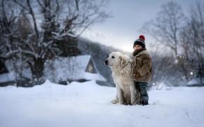 Picture winter, dog, boy