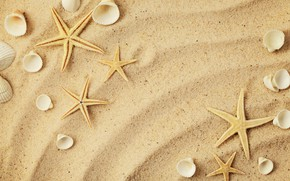 Picture sand, star, shell, sand, starfish, seashells