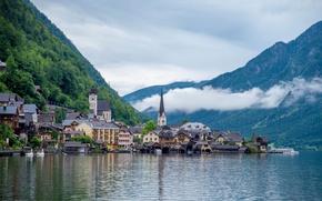 Picture forest, lake, home, Austria, Hallstatt